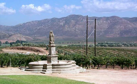 Ensenada Wine region mexico